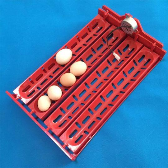 Лоток универсальный на 32-40 яиц.